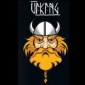 Ароматизатор Viking